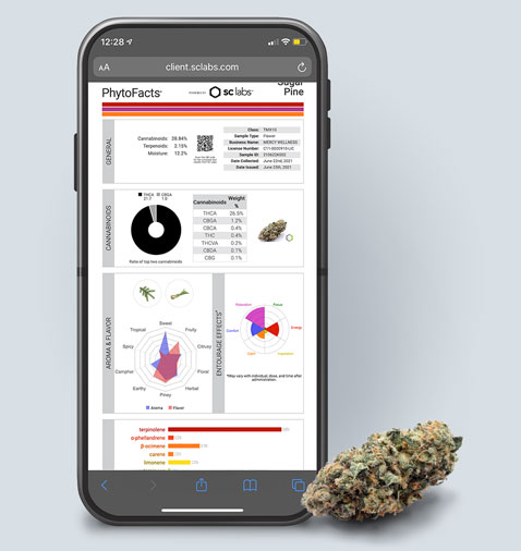 Mercy Wellness testing results on mobile phone
